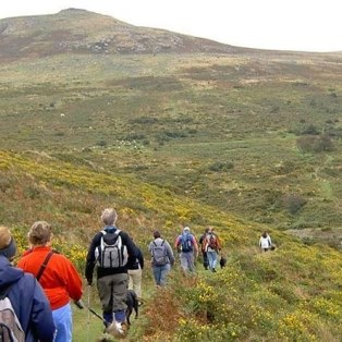 Guided walk on Dartmoor
