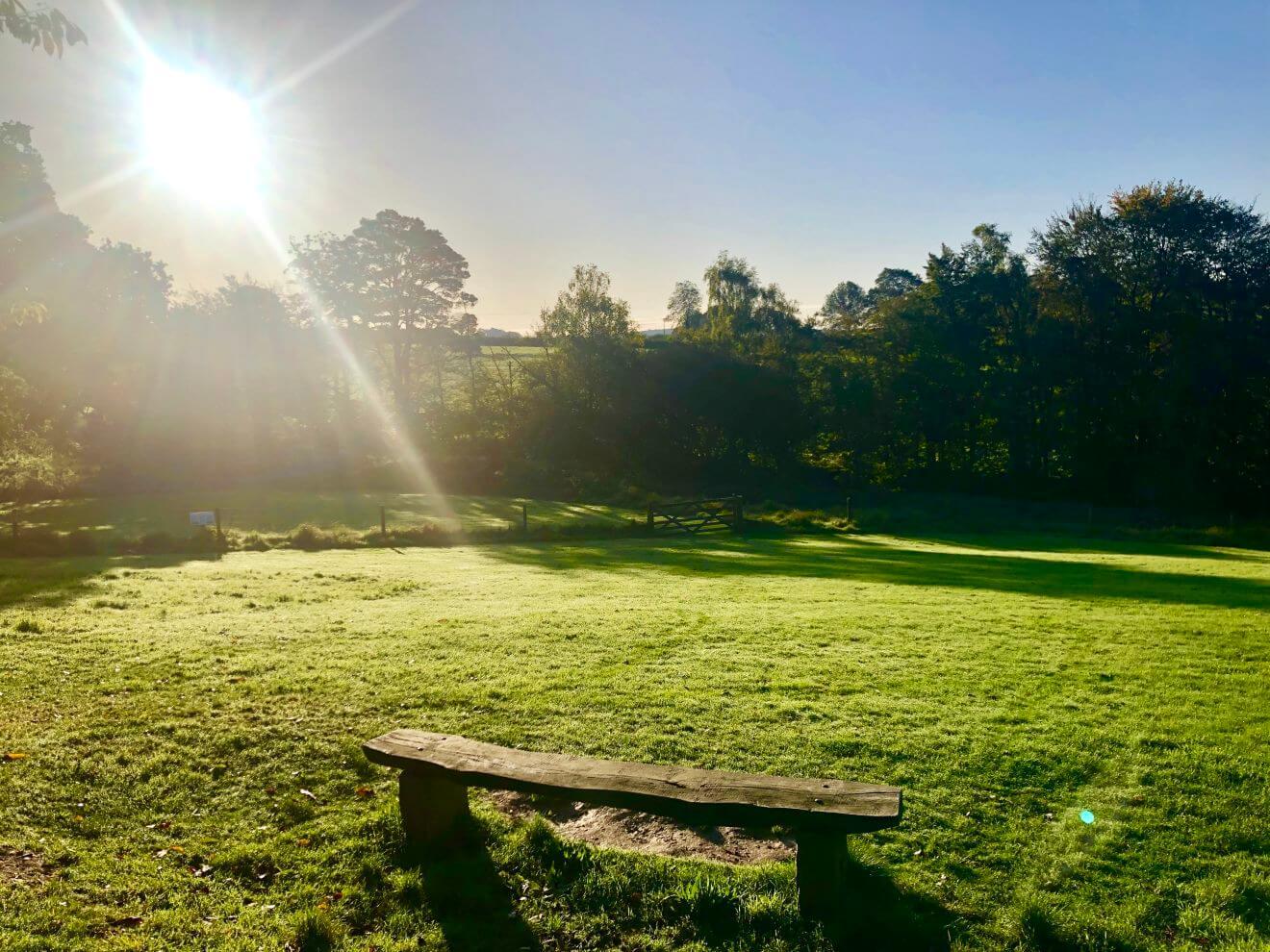 Woodovis Park Image 8