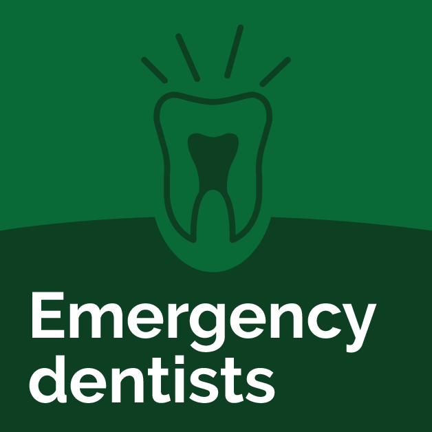 woodovis-park-camping-touring-devon-314x314px-Emergency-dentists