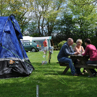 woodovis-park-camping-touring-devon-image-nav-camping-pitches-02