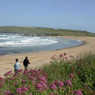 woodovis-park-camping-touring-devon-out-&-about-constantine-bay