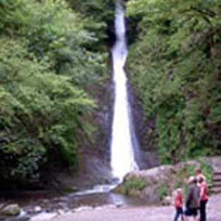 woodovis-park-camping-touring-devon-out-&-about-lydford-gorge