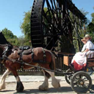 woodovis-park-camping-touring-devon-out-&-about-morwellham-quay