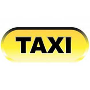 woodovis-park-camping-touring-devon-out-&-about-taxi