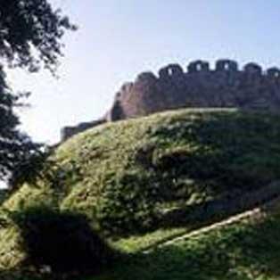 woodovis-park-camping-touring-devon-out-&-about-totnes-castle