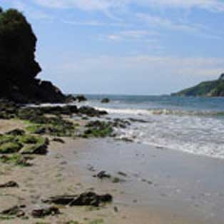 woodovis-park-camping-touring-devon-out-&-about-wonwell